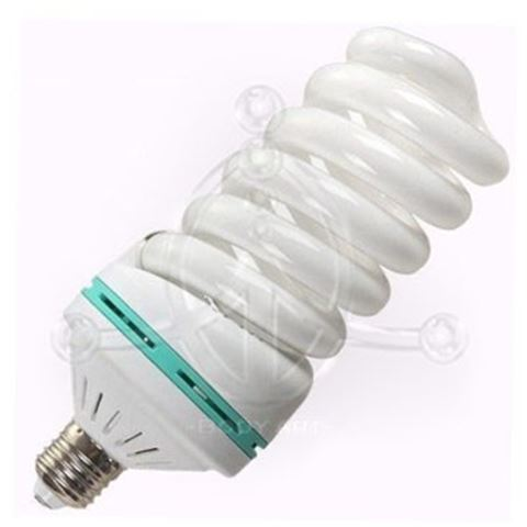 Spare Light Bulb for LAMP1